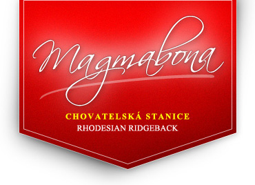 magmabona-logo