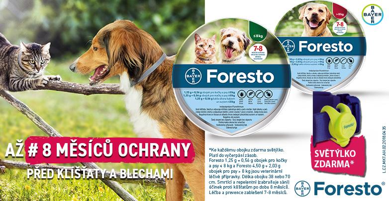 2IN18-057_Foresto782x406_28-2